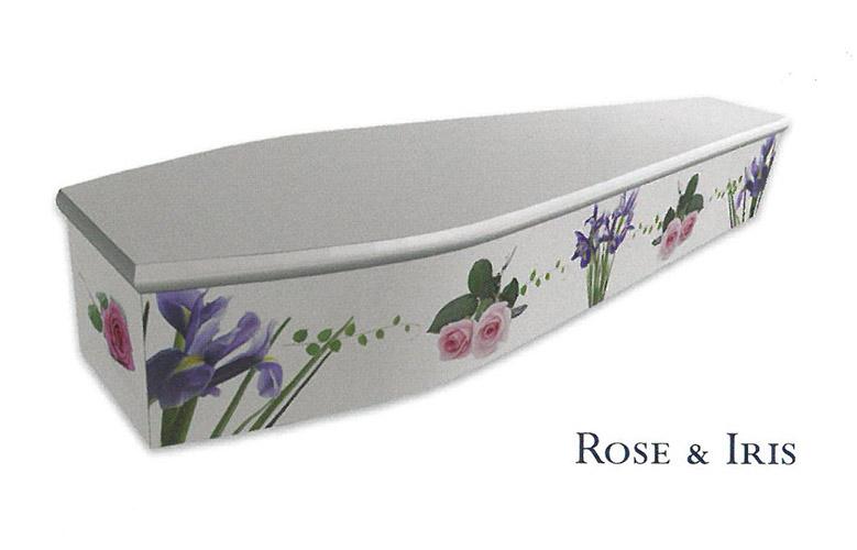 Colourful Coffins Iris