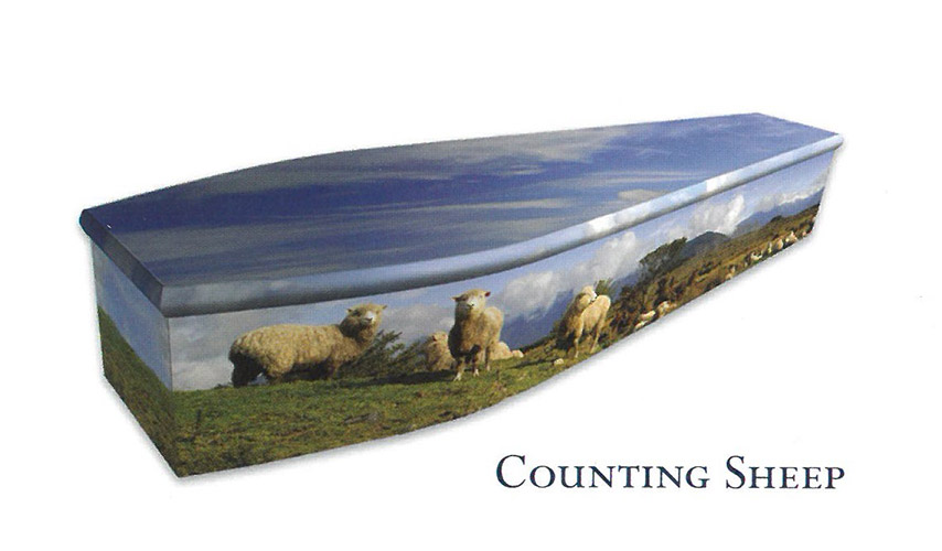 Colourful Coffins Sheep